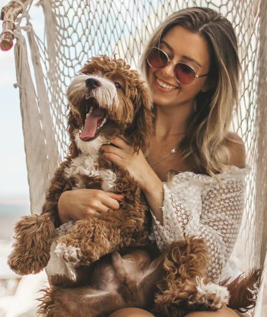 dog-owner03.jpg